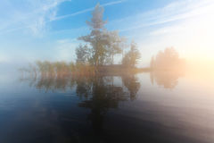 Landscape of morning nature on lake with blue sky, clouds,  fog mist and lonely tiny island with trees Royalty Free Stock Images