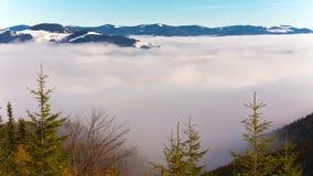 Landscape of morning sunrise. The foggy garden stock video