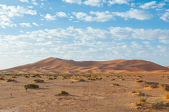 Landscape of morocco. Beautiful panorma of a rural city in morocco Royalty Free Stock Images