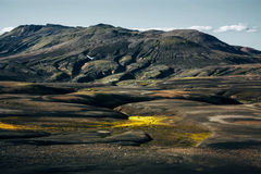 Landscape with moss in Iceland. Mountain and volcanic area Royalty Free Stock Image