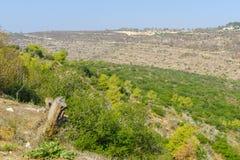 Landscape in the Mount Carmel national park Stock Image