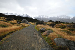 Landscape of Mount Cook track Stock Photo