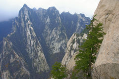 Landscape of Mount Hua Royalty Free Stock Image