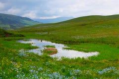 Landscape mountain Stock Images