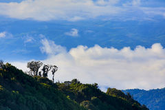 Landscape the mountain doi pha hom pok Stock Photography