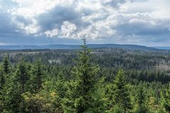 The landscape of mountain in Harz, Germany Royalty Free Stock Photo