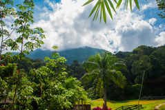 Landscape with mountain. Kuching to Sarawak Culture village. Malaysia royalty free stock photos