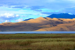 Landscape with mountain lake Tso Moriri Stock Photography