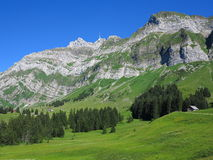Mountain massif green summer scenery Royalty Free Stock Images