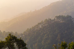Landscape mountain and mist on morning mountain,soft light Backg Royalty Free Stock Images