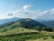 Landscape of mountain pasture. Carpathians mountains, west Ukraine. Blue sky with big white clouds. Nature background. Hillsides covered with dense forest royalty free stock image