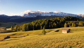 Landscape in mountain pasture and peak, Alpe di Siusi, Dolomites royalty free stock image