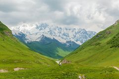 Landscape with mountain peaks in Georgia. Landscape summer and snowy mountain peaks near the village of Mestia, Georgia Stock Image