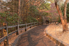 Landscape Mountain pedestrian trail made of recycled tires Stock Images