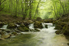 Landscape with a mountain river in Crimea Stock Photo