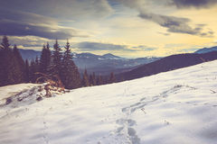 Landscape in the mountain: snow covers the wooded peaks. Stock Photography