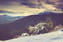 Landscape in the mountain: snow covers the wooded peaks. Stock Images