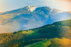 Landscape in the mountain:snowy tops and green valleys. Stock Images
