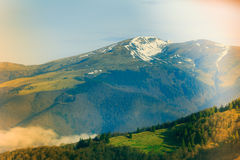 Landscape in the mountain:snowy tops and green valleys. Stock Image