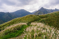 Landscape of mountain in taipei Stock Image