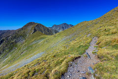 Landscape with mountain trail. And clear blue sky Stock Photos