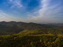 Landscape of mountain valley with autumn forest. Stock Photos