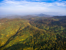 Landscape of mountain valley with autumn forest. Stock Image