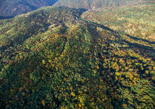 Landscape of mountain valley with autumn forest. Royalty Free Stock Photos