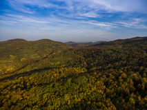 Landscape of mountain valley with autumn forest. Stock Photo