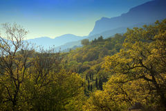 Landscape of a mountain valley in Crimea Stock Image