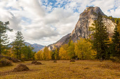 Landscape in a mountain valley Stock Photography