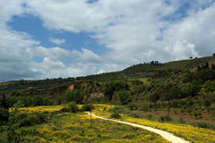 Landscape of a mountain valley in Sicily, Italy Royalty Free Stock Photo