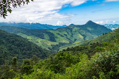 Landscape of mountain view forest in thailand Stock Image