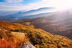 Landscape mountain yellow autumn forest in sunlight Stock Photos