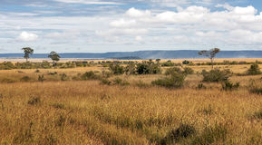Landscape with mountains. In the African savannah of Kenya, on a sunny day Stock Photos