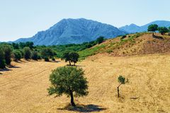 Landscape with mountains in Cagliari province Sardinia island. Landscape with the mountains in Cagliari province, Sardinia island, Italy royalty free stock images