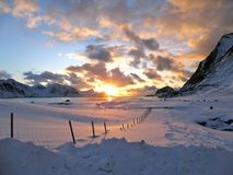 The sun back to Lofoten after months of darkness. royalty free stock photo