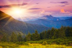 Evening sun in the mountains Royalty Free Stock Image
