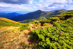 Landscape mountains and field under blue sky Royalty Free Stock Photos