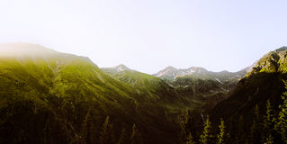 Landscape, mountains and forest background. Royalty Free Stock Photos