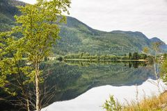 Landscape in Norway. Landscape with mountains, forest and lake in Norway Stock Images