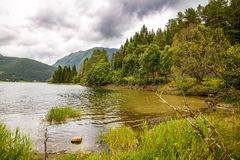 Landscape in Norway. Landscape with mountains, forest and lake in Norway Royalty Free Stock Image