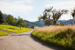 Landscape with mountains in Germany. Silent view on landscape with mountains and lonely rustic road in Germany Royalty Free Stock Photo