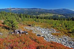 Landscape in mountains Krkonose, Czech Republic Stock Image