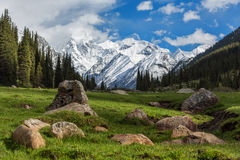 Landscape with mountains, Kyrgyzstan Royalty Free Stock Image