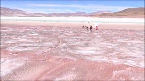 Landscape of mountains,lake and valley Atacama desert Chile. Landscape of mountains, salt flats and valley in Atacama desert Chile stock footage
