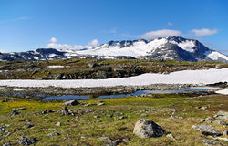 Landscape mountains of Norway. Royalty Free Stock Photo