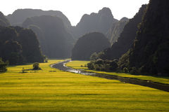Landscape with mountains, rice fields and river Royalty Free Stock Photo