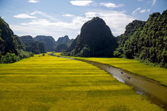 Landscape with mountains, rice fields and river Stock Photography