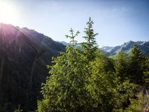 In the mountains. Landscape in the mountains on a summer morning Stock Photos